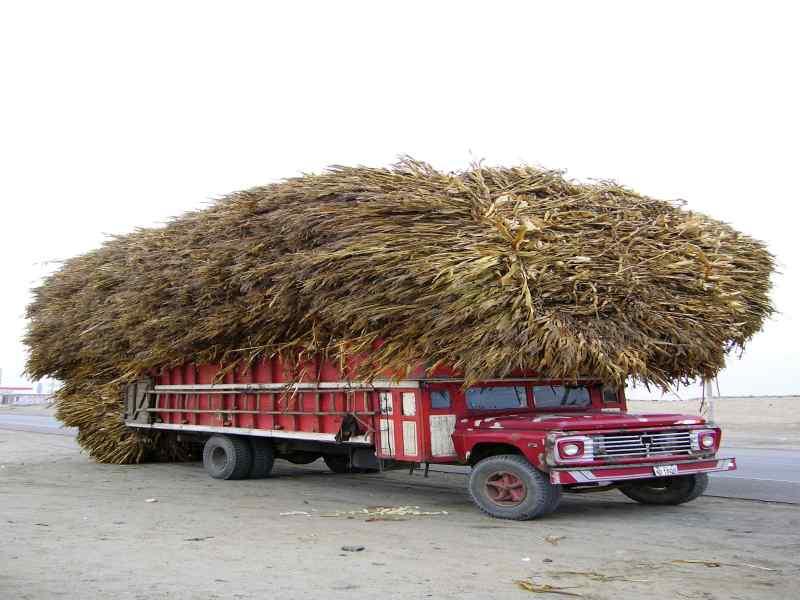 Lastwagen auf der Panamerciana